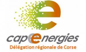 logo_cap_delegation_corse2014