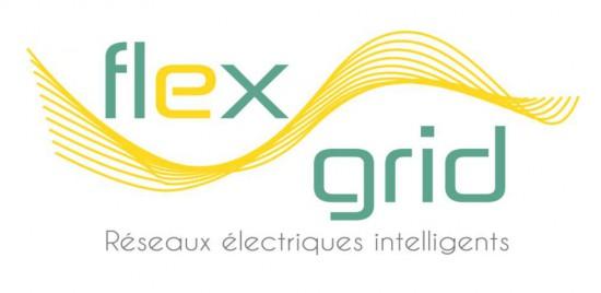 Smart-grids-flexgrid