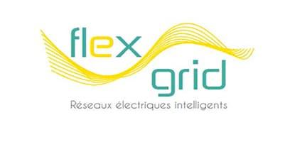Les Réseaux Electriques Intelligents, Smart Grids